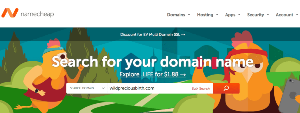 choosing a doula website domain
