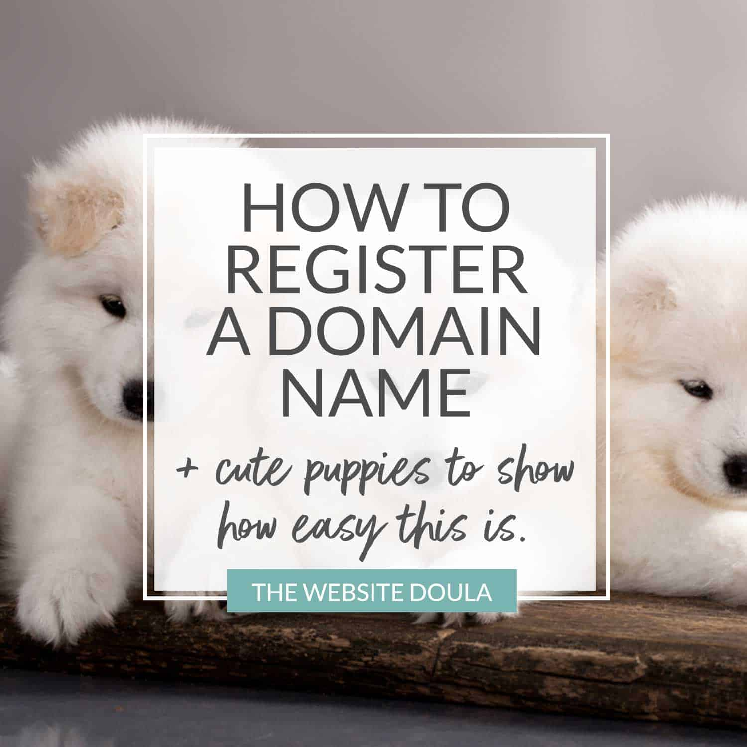 how to register a doula domain name