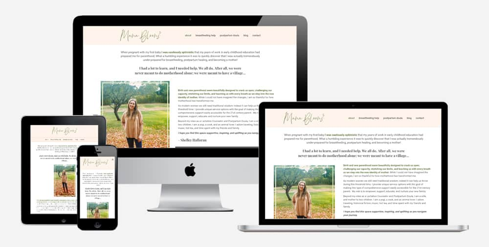 lactation consultant website Design