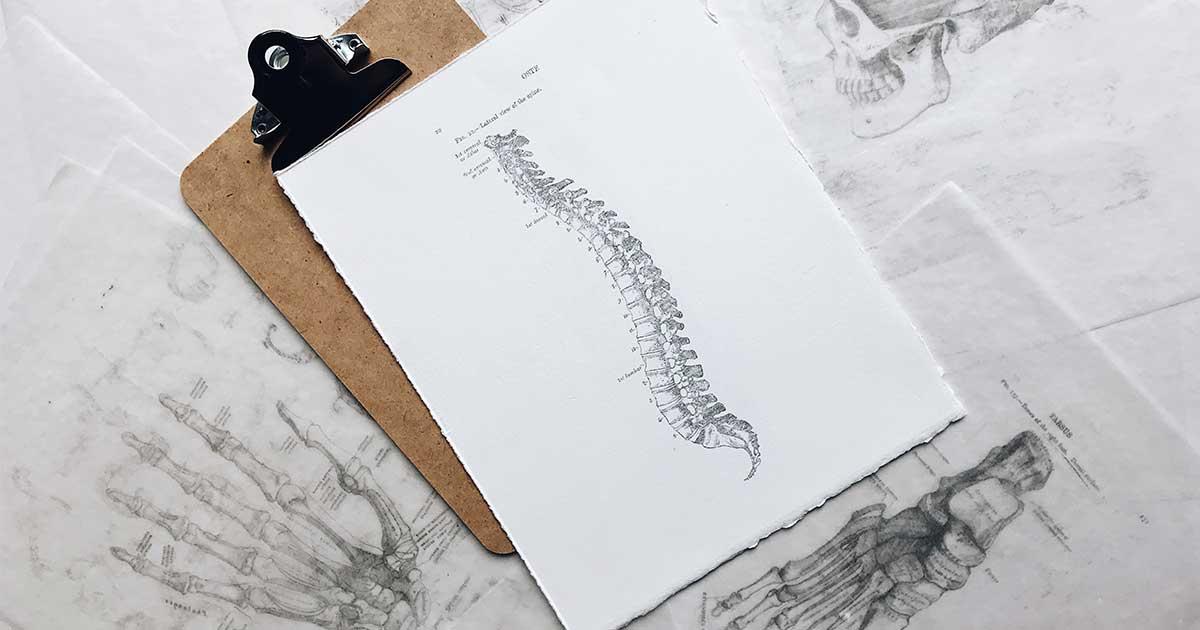 chiropractor SEO tips