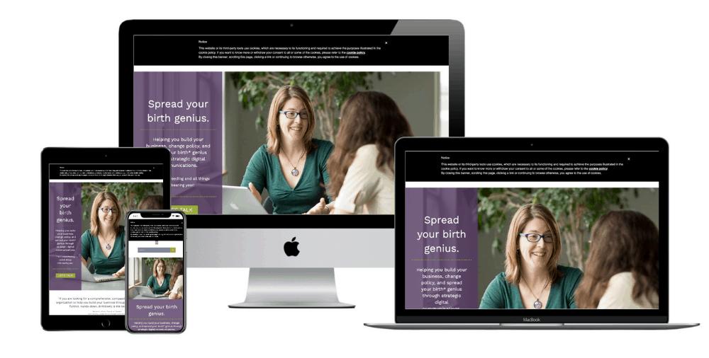 Birth Business Consultant Website